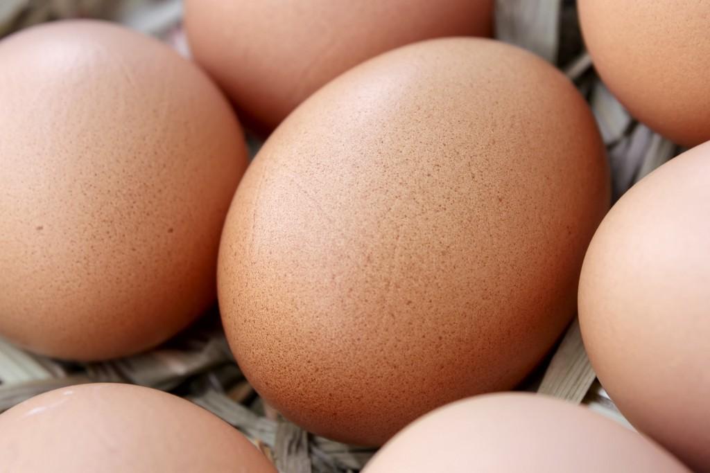 Kmetija ZAKRAŠNIK - domača kokošja jajca