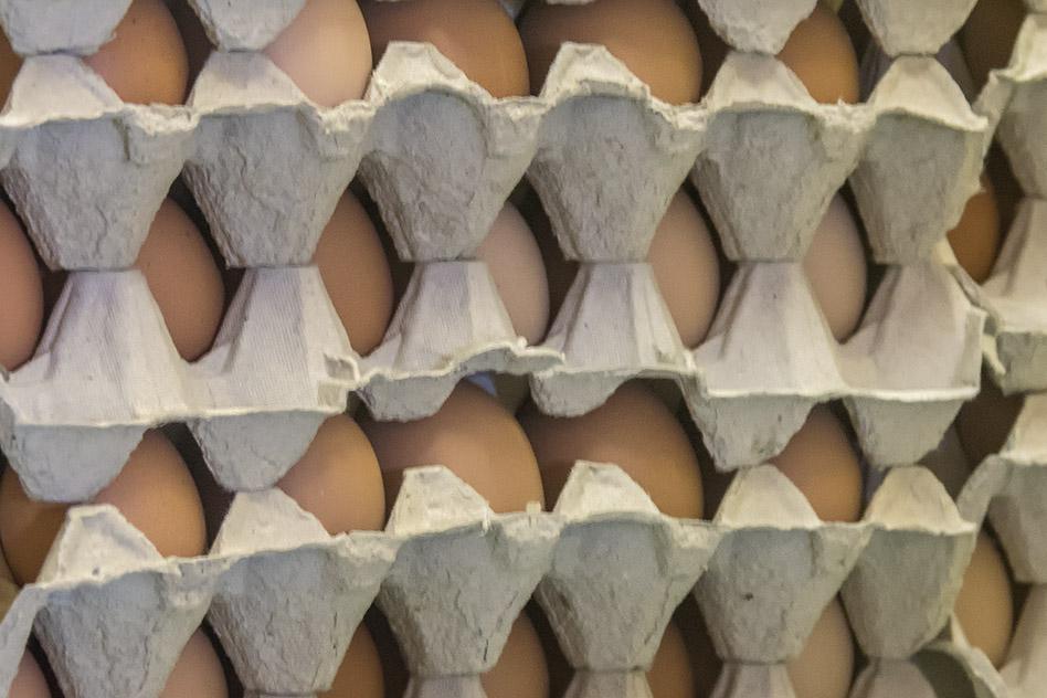 Kmetija ZAKRAŠNIK - embalaža jajc