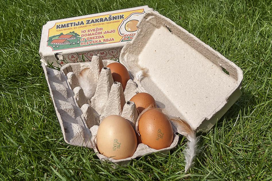 Kmetija ZAKRAŠNIK - označevanje jajc